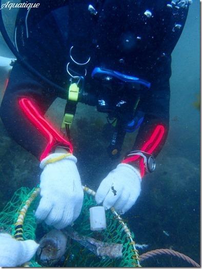 海底清掃-2