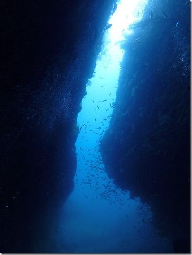 小牛の洞窟